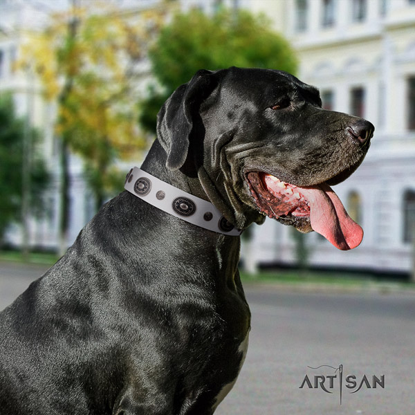 Great Dane easy wearing collar with fashionable decorations for your doggie