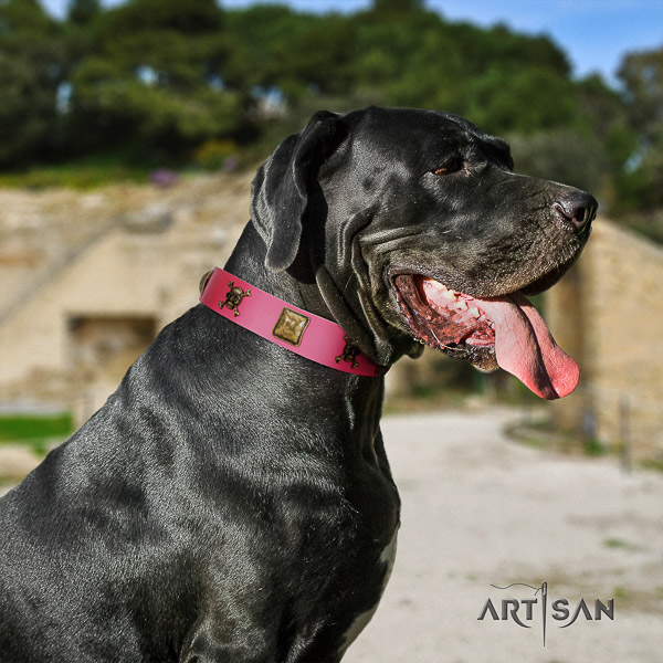 Great Dane easy wearing full grain natural leather collar with studs for your doggie