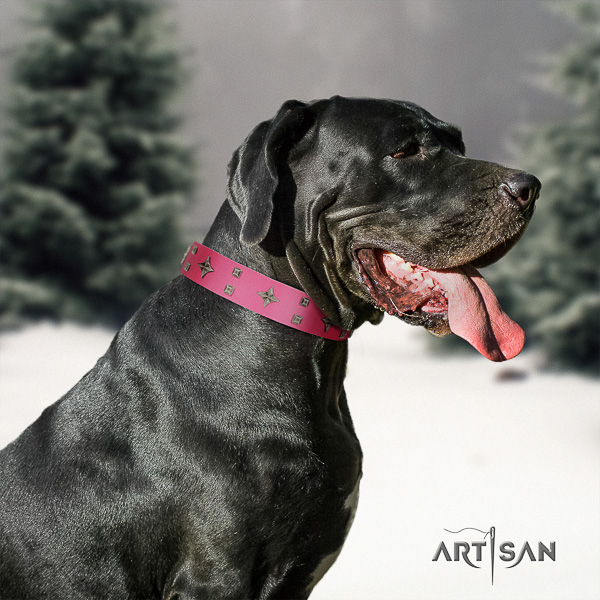 Great Dane basic training full grain natural leather collar with adornments for your doggie