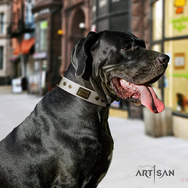 Great Dane unique full grain leather collar with rust-proof d-ring