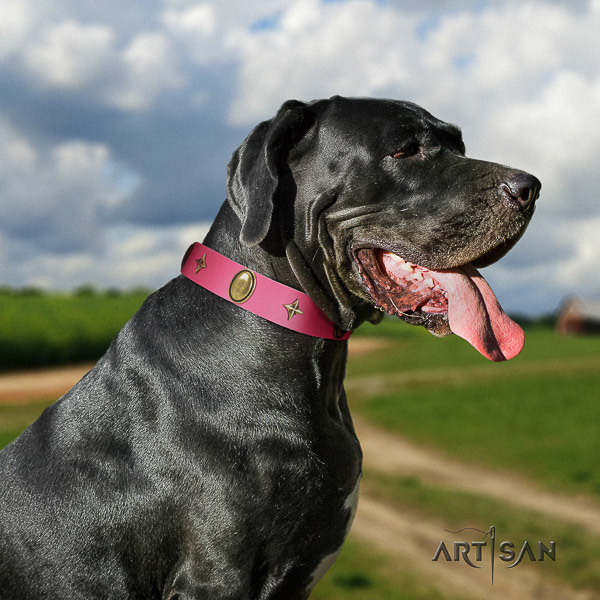 Great Dane stylish walking full grain genuine leather collar with decorations for your pet