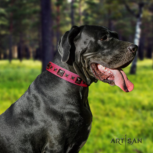 Great Dane convenient collar with incredible decorations for your dog