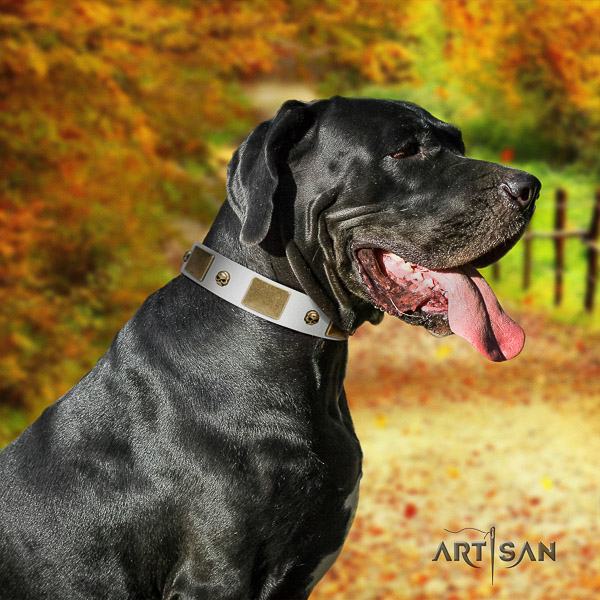 Great Dane fancy walking genuine leather collar with decorations for your four-legged friend