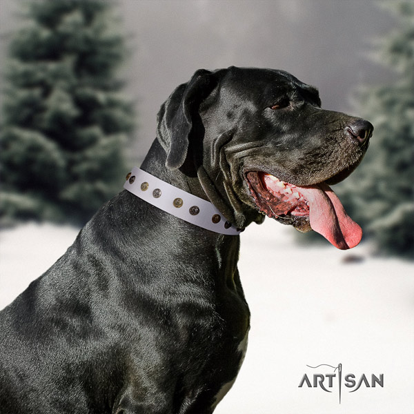 Great Dane fine quality collar with incredible embellishments for your dog