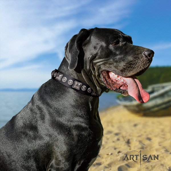 Great Dane convenient collar with awesome studs for your doggie