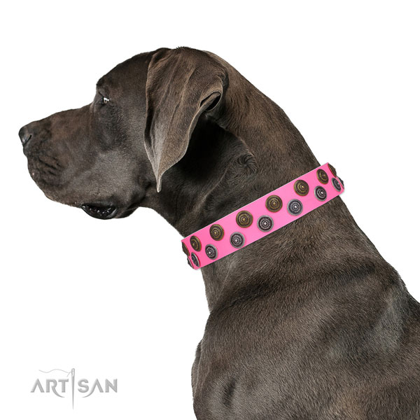 Great Dane adjustable full grain leather dog collar for comfy wearing
