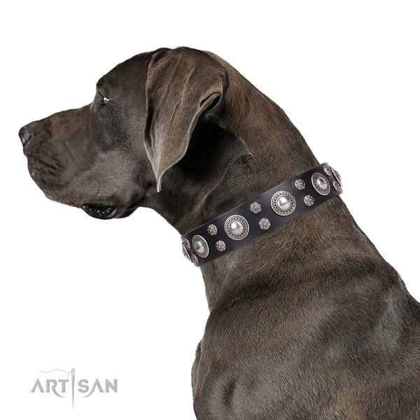 Great Dane adjustable leather dog collar for easy wearing