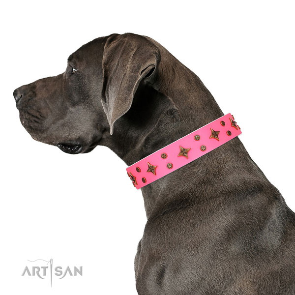 Great Dane exquisite full grain genuine leather dog collar for comfortable wearing