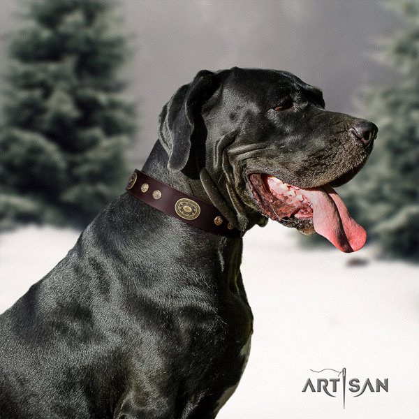 Great Dane stylish leather collar with rust resistant d-ring