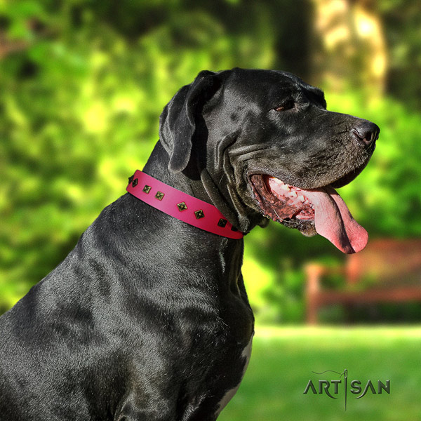 Great Dane easy wearing full grain leather collar with corrosion resistant d-ring