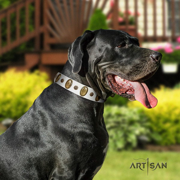 Great Dane everyday use full grain natural leather collar with decorations for your dog
