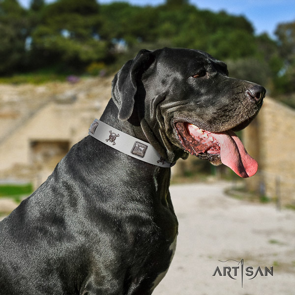Great Dane basic training natural leather collar with decorations for your pet