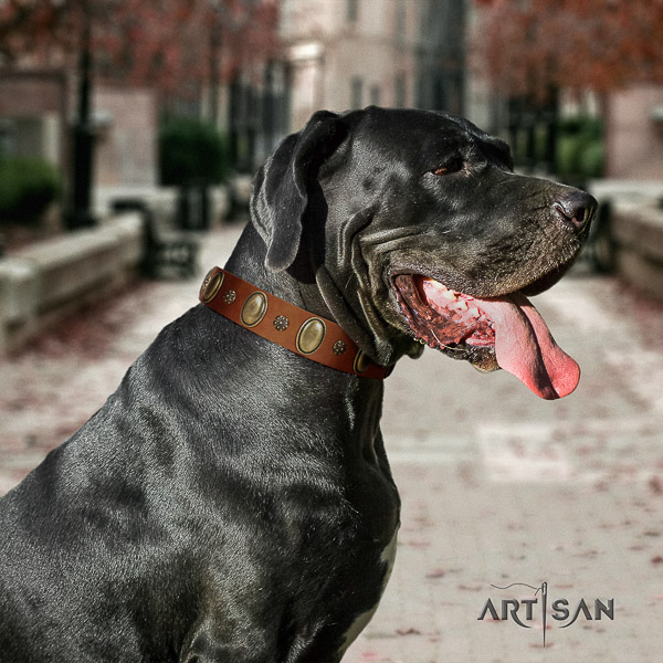 Great Dane easy wearing natural leather collar with decorations for your pet