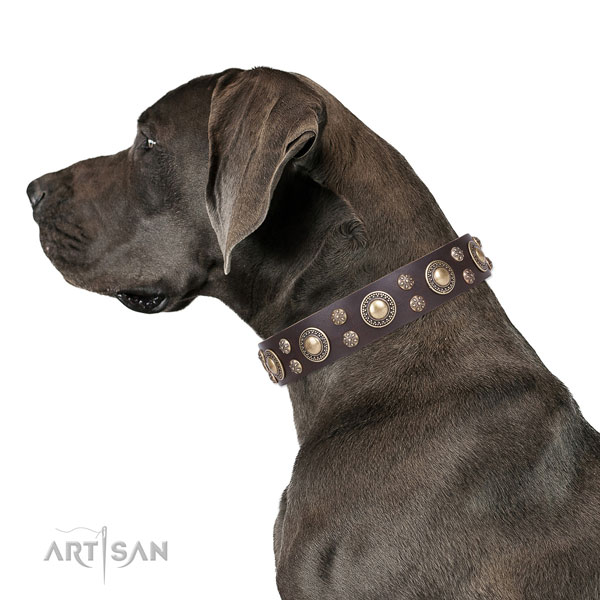 Great Dane decorated genuine leather dog collar for everyday use