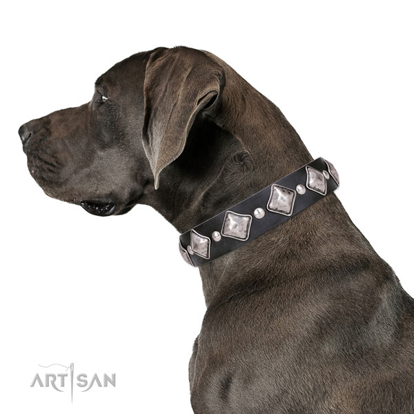 Great Dane easy wearing leather dog collar for walking