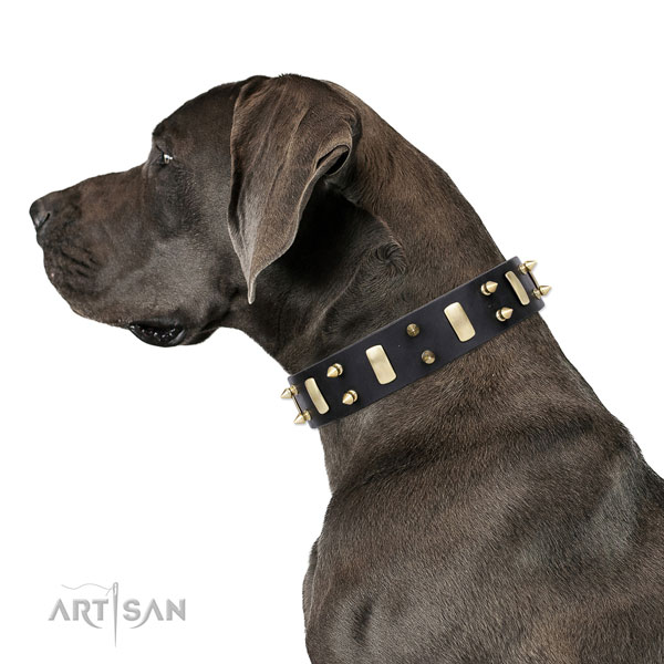 Great Dane top quality leather dog collar for comfy wearing