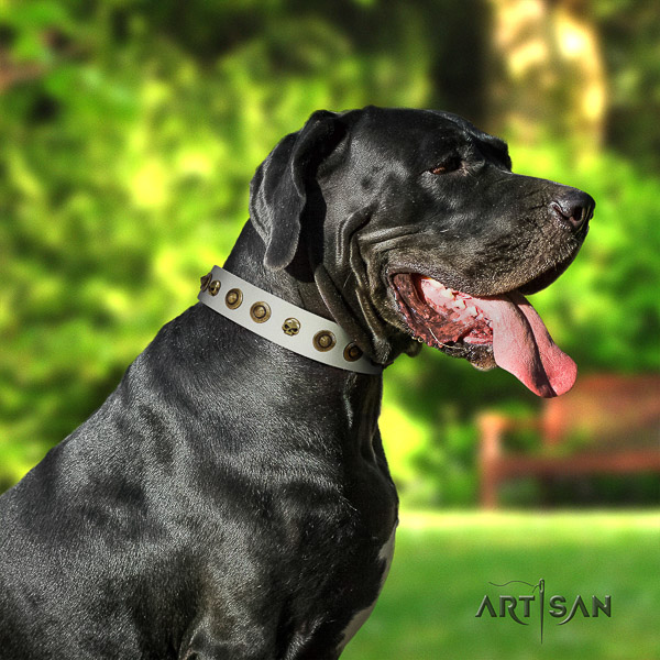 Great Dane handy use leather collar with decorations for your canine