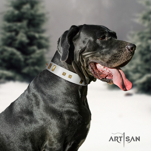 Great Dane everyday use full grain genuine leather collar with decorations for your canine