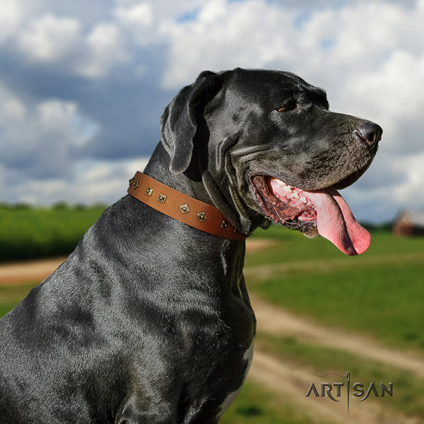 Great Dane convenient genuine leather collar with corrosion proof buckle