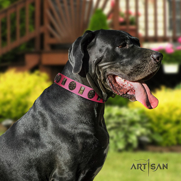 Great Dane comfy wearing full grain leather collar with decorations for your pet