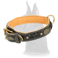 Comfortable Leather Great Dane Collar