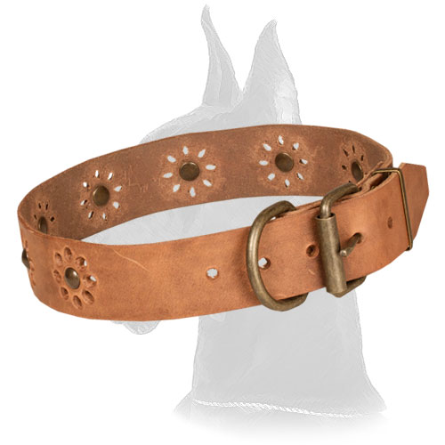 Tan Leather Collar for Great Dane Walking in Style