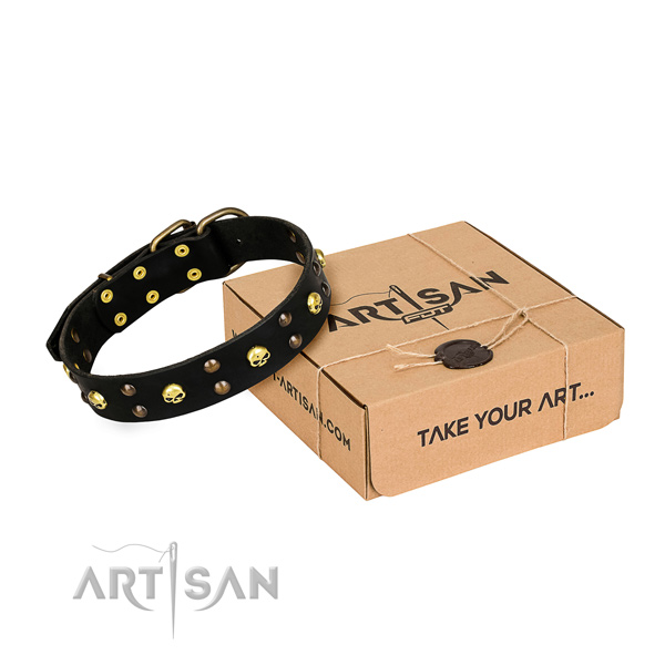 Day-to-day leather dog collar with refined adornments