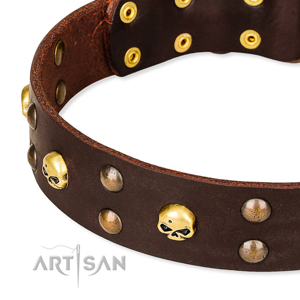 NaturalAwesome leather dog collar for stylish walking