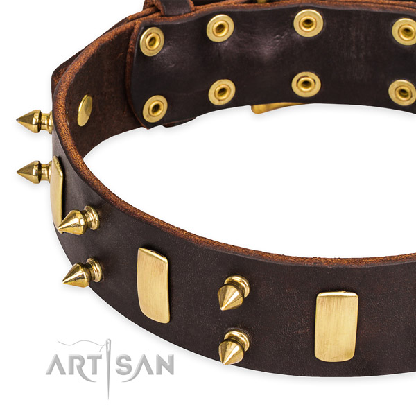 Snugly fitted leather dog collar with extra sturdy brass plated buckle and D-ring