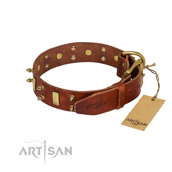 Natural leather dog collar with smoothly polished leather surface
