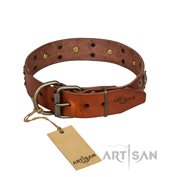 Reliable leather dog collar with strong fittings