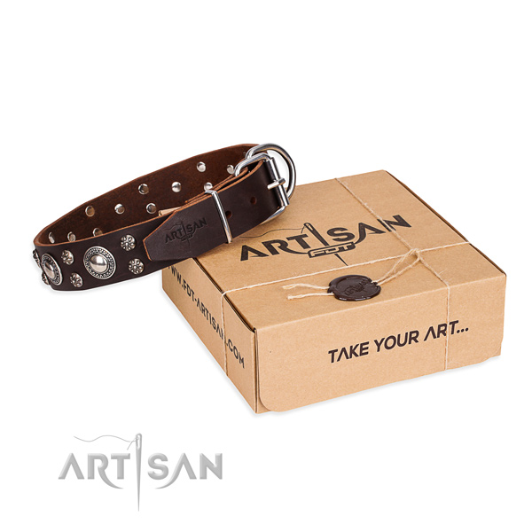 Day-to-day leather dog collar with cute studs