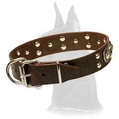 Brown Adorned Leather Collar