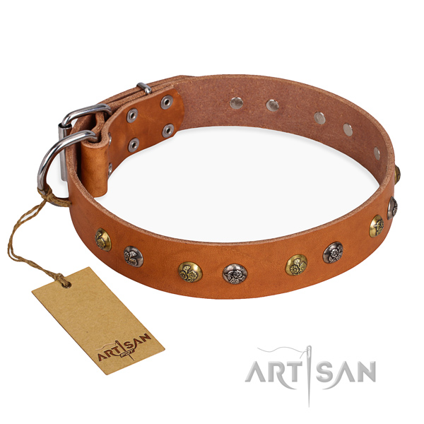 Easy wearing top notch dog collar with rust resistant traditional buckle