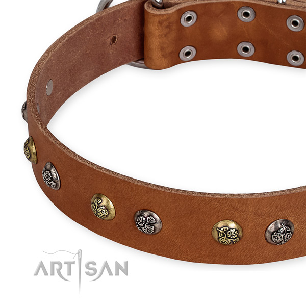 Full grain natural leather dog collar with fashionable durable decorations