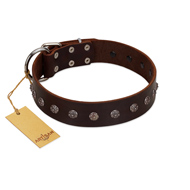"""Graceful Classic"" Mod FDT Artisan Brown Leather Great Dane Collar"