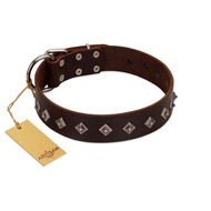 """Boundless Energy"" Premium Quality FDT Artisan Brown Designer Leather Great Dane Collar with Small Pyramids"