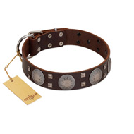 """Sun in Barchans"" Modern FDT Artisan Brown Leather Great Dane Collar with Engraved Stars on Round Plates and Studs"