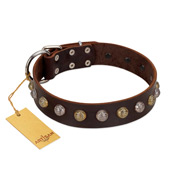 """Gape Buster"" FDT Artisan Brown Leather Great Dane Collar with One Row of Studs"