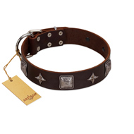 """Cold Star"" Designer FDT Artisan Brown Leather Great Dane Collar with Silver-Like Adornments"