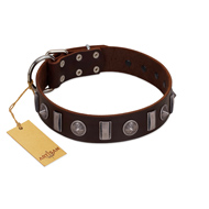 """Spiky Way"" FDT Artisan Brown Leather Great Dane Collar with Silver-Like Decorations"