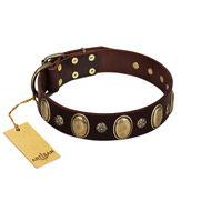 """Bronze Idol"" FDT Artisan Brown Leather Great Dane Collar with Eye-catching Ovals and Small Studs"