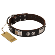 """Baller Status"" FDT Artisan Brown Leather Great Dane Collar Adorned with a Set of Chrome Plated Studs and Plates"