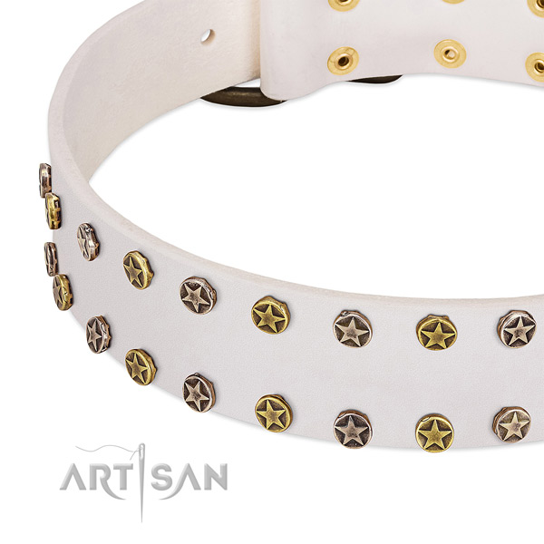 Exceptional embellishments on genuine leather collar for your doggie
