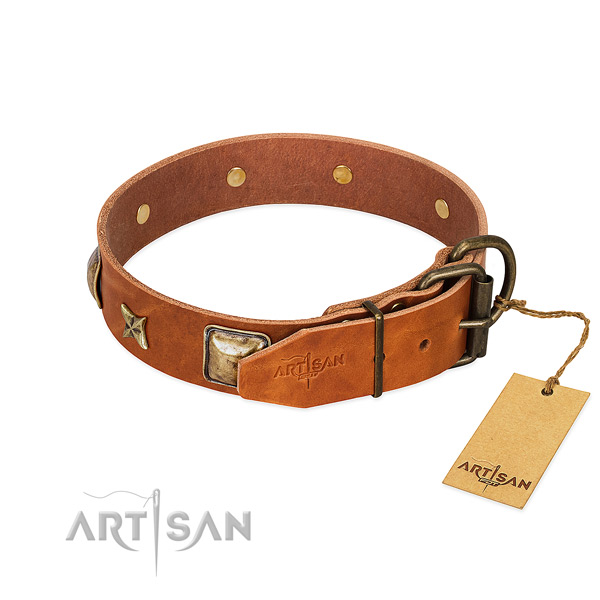 Full grain genuine leather dog collar with rust resistant fittings and adornments