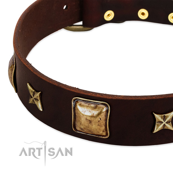 Strong fittings on full grain genuine leather dog collar for your dog