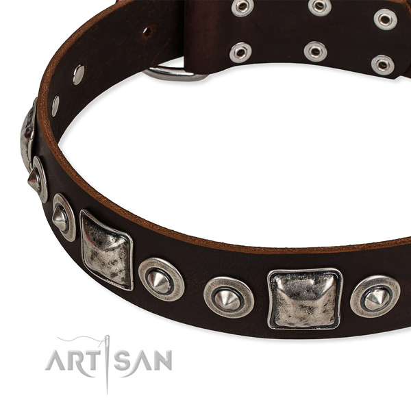 Reliable genuine leather dog collar created for your stylish four-legged friend