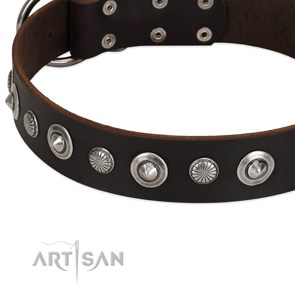 Designer studded dog collar of fine quality natural leather