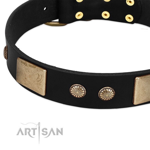 Genuine leather dog collar with studs for easy wearing