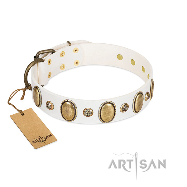 Full grain leather dog collar of gentle to touch material with inimitable decorations